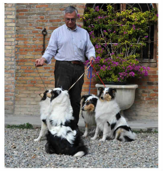 L. Rocco with M.P Bordone`s harlequin puppies - 2012